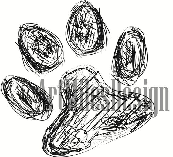 Cute Dog Paw Cat Paw Colourful Sketch Drawing Vector Animal Paw