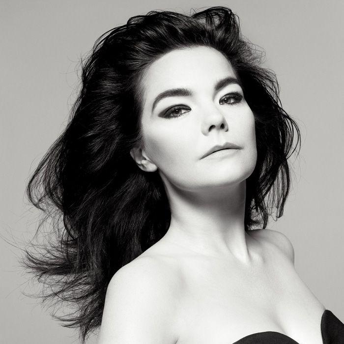 bjork and the glamour shot | bjork | Bjork, Music artists, Music
