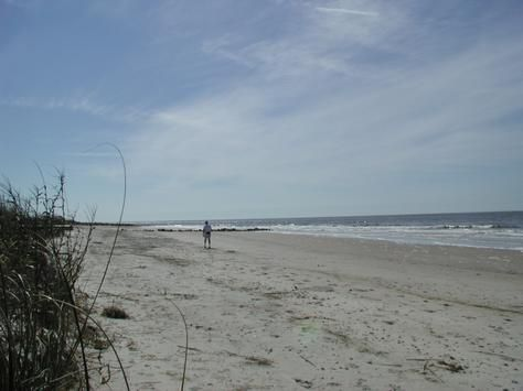 Edisto Beach Sc When My Family Lived In Columbia We Went To A Lot Much Less Crowded Than Myrtle