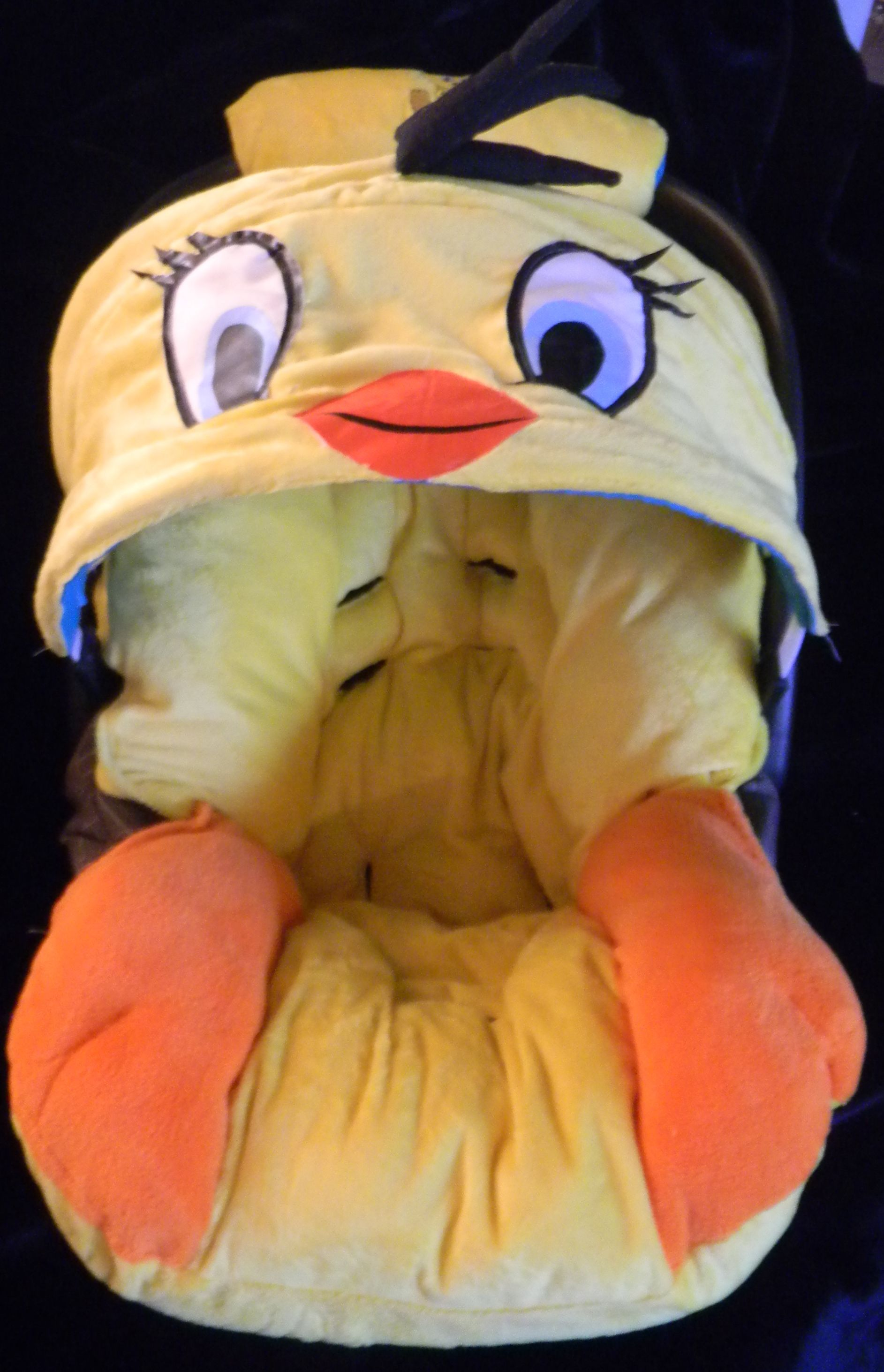 Tweety Bird Babies Rooms Seat Covers Car Hdr Glove