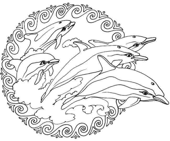 dolfijnen (mandala) | kleurplaten | Pinterest