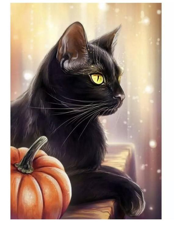 US Seller. 40x30cm Black Cat and Pumpkin Halloween Fall Diamond Painting Art Kit. Round Drills Full Drill. Fast S&H by OurCraftAddictions