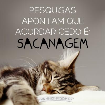 Sacanagem Humor Pinterest Frases Gato Y Humores