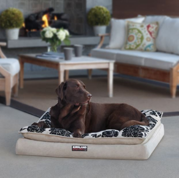 Large Dog Kennels Costco : Orthopedic dog bed for large dogs cooling gel memory foam