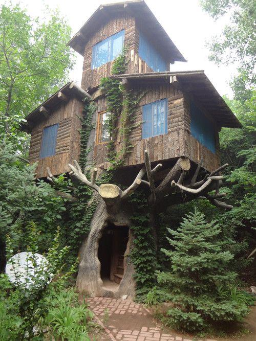 Tree house Casas de árbol Pinterest Casas de arbol, El arbol y - casas en arboles