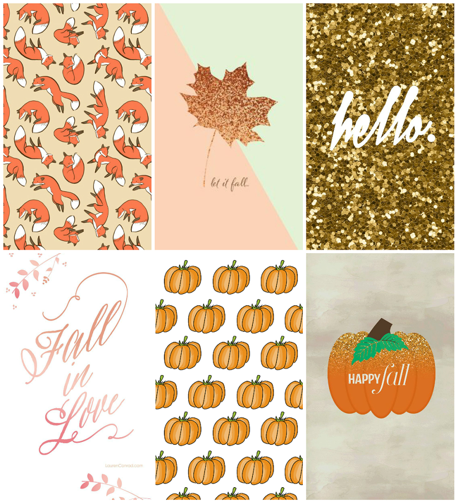 autumn inspired iPhone wallpapers (milk bubble tea