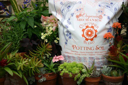 Potting Soil Garden 3 natural and organic alternatives to scotts potting soil for your 3 natural and organic alternatives to scotts potting soil for your container garden treehugger workwithnaturefo
