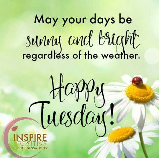 20 Best Happy Tuesday Morning Messages In this article