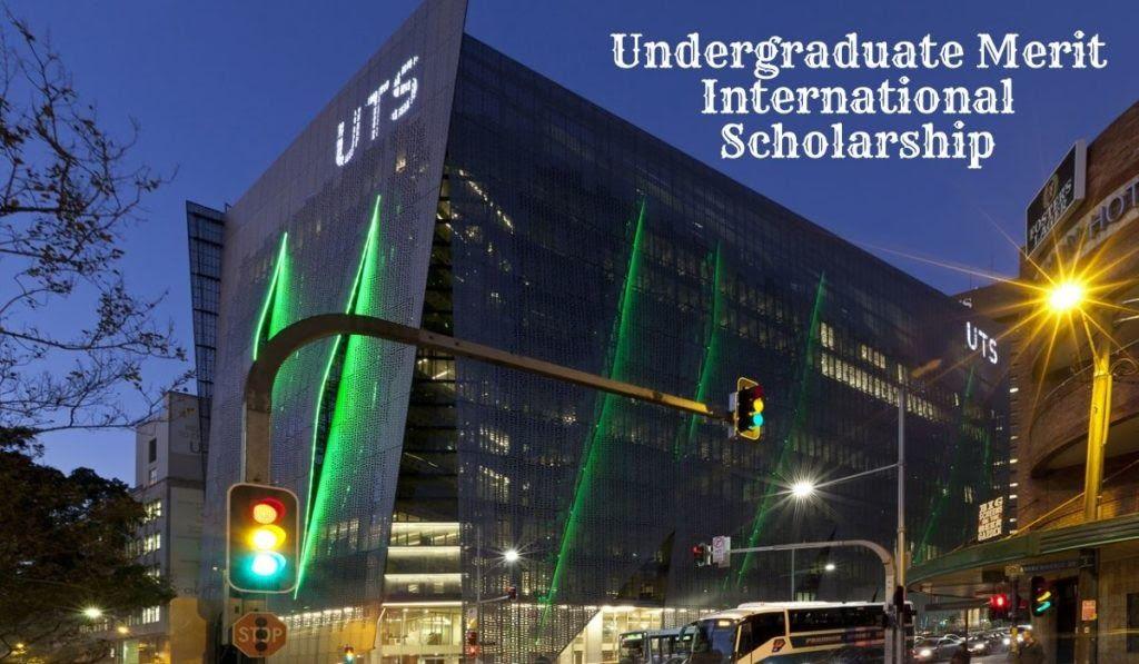 Undergraduate Merit International Scholarship at the