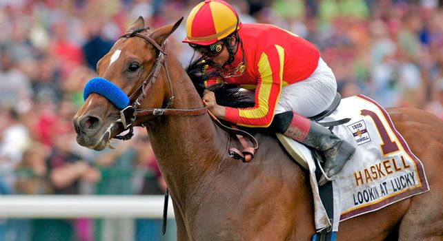 Lookin At Lucky, the 2009 champion 2-year-old male and winner of the Preakness Stakes (gr. I), is being retired and will stand at Ashford Stud in 2011 Photo courtesy of Eclipse Sportswire