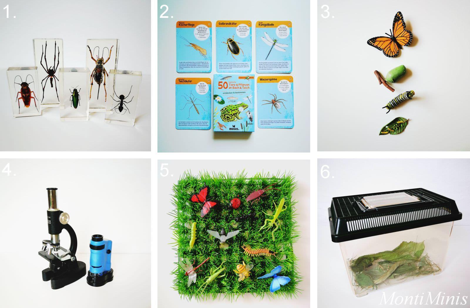 Materialien zum Thema Insekten für Kinder   Montessori Blog & Shop ...