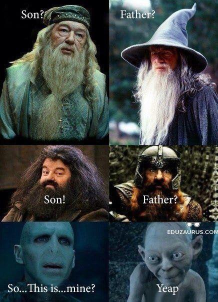 Harry Potter Lotr Mashup Grappige Harry Potter Grappig Harry Potter