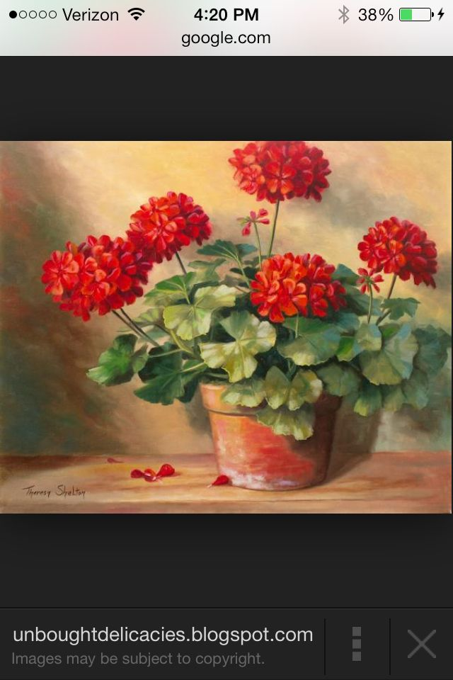 This was my mom moms fav flowers I'm gonna paint it in her honor