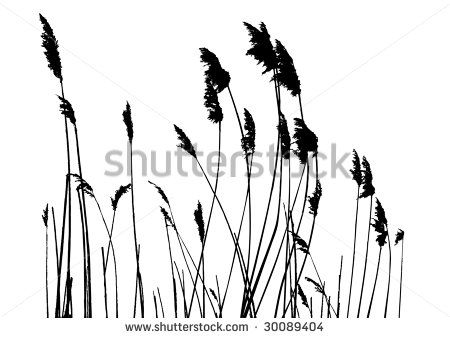 Tall Grass Silhouette With Tall Grass Silhouette Google Search Stencils Pinterest Grass