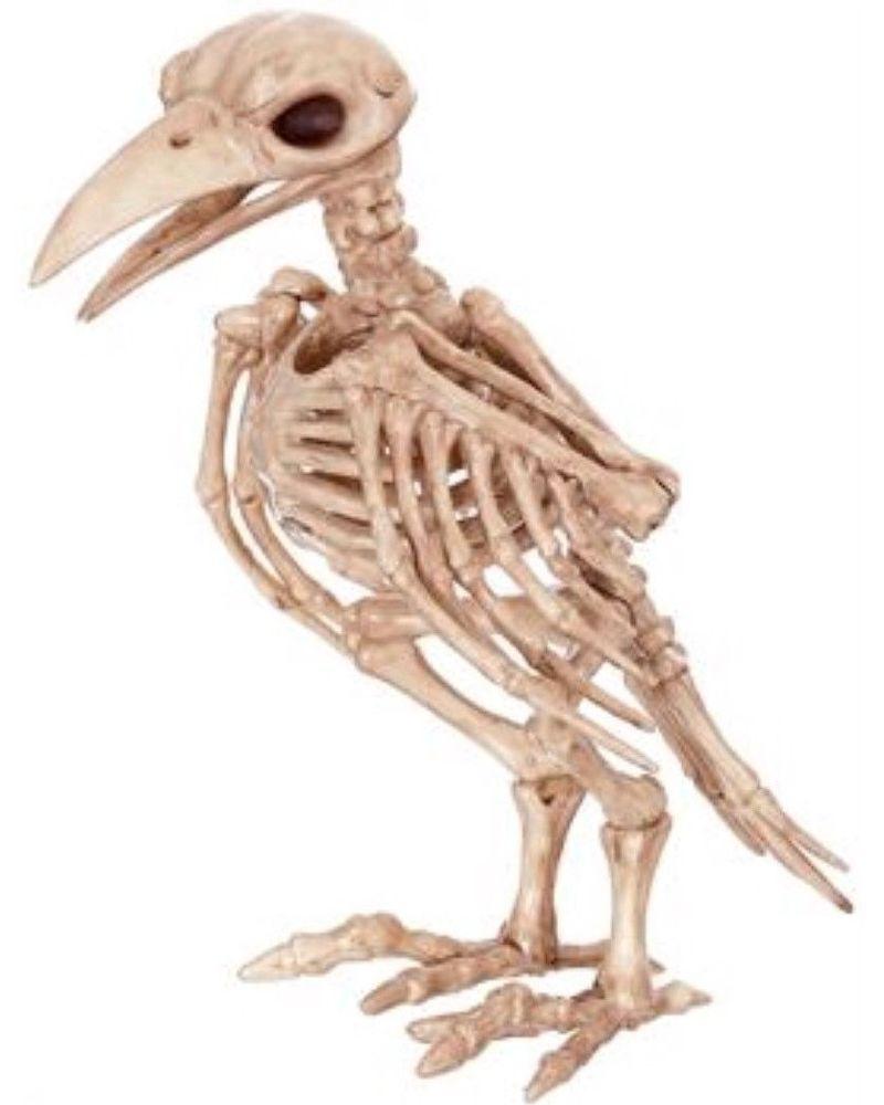 7 5 Tweety Bones Skeleton Bird Haunted House Halloween Prop Plastic Wreaths Ebay Animal Skeletons Halloween Skeletons Raven Decor