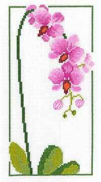 Orchid Cross Stitch Kit by Heather Anne Designs for Classic Embroidery