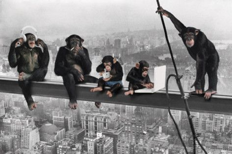 The Chimp-Girder Poster