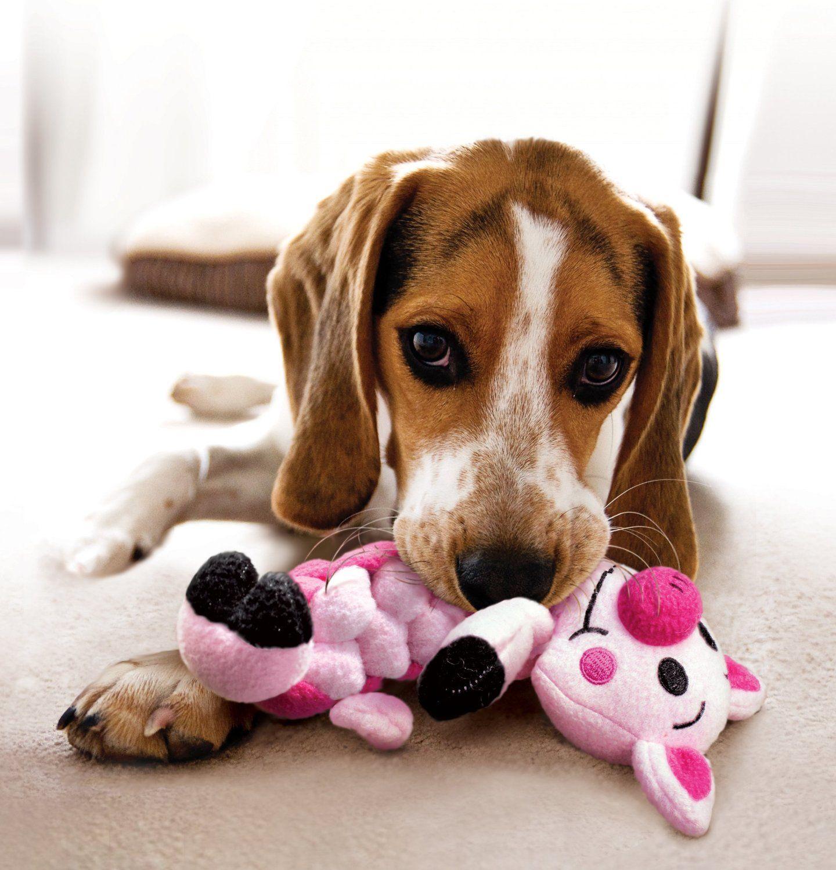 Pet Supplies Pet Squeak Toys KONG Pudge Braidz Pig Dog