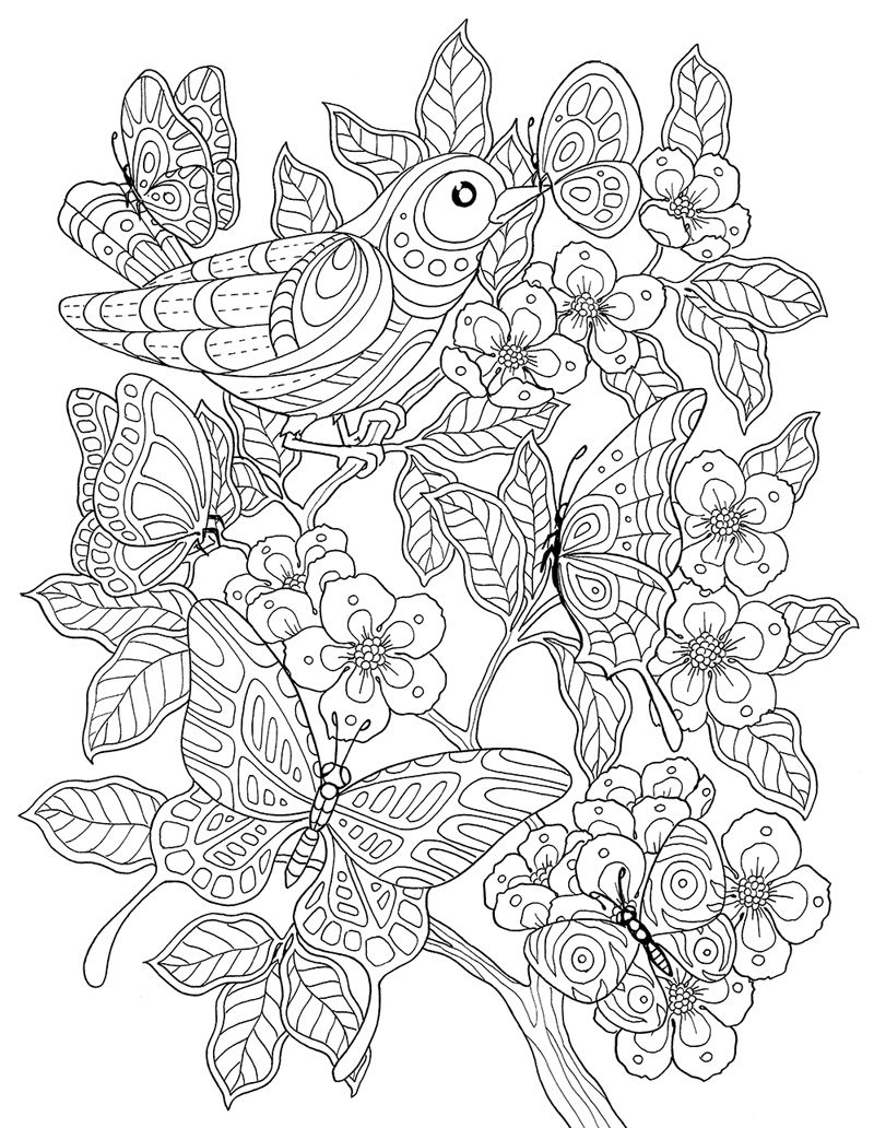 Bird Flowers And Butterflies Antistress Coloring Zentangle Designs Pages Mandala