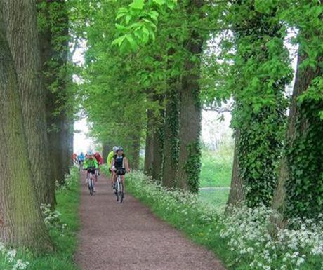 Top 5 Cycling Destinations For Beginners With Images Luxury