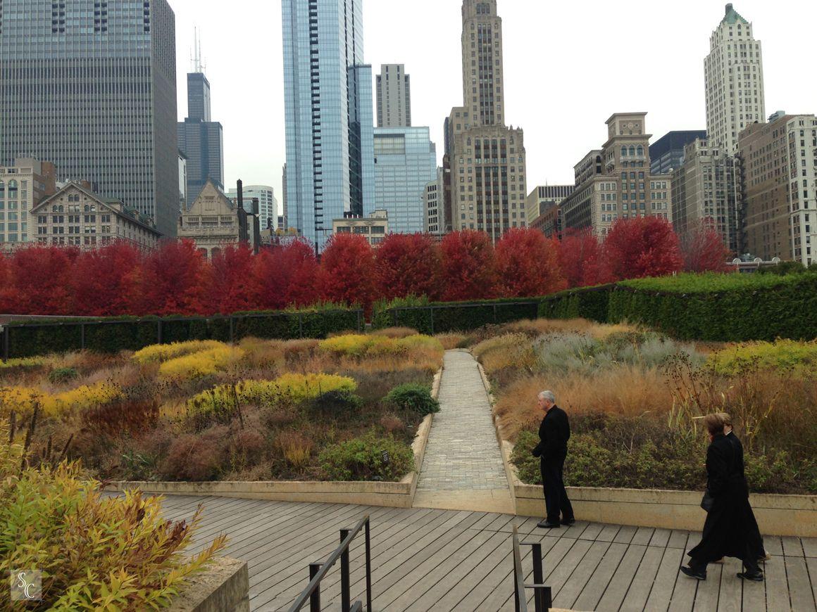 Lurie Garden | Chicago, Illinois Piet Oudolf #roydiblik ...