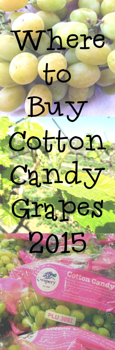 007 Where to Buy Cotton Candy Grapes 2015 Cotton candy