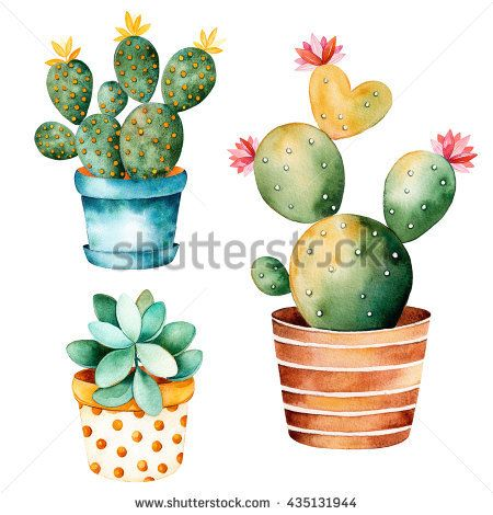 Watercolor handpainted cactus plant and succulent plant in pot.Watercolor clipart,individual flower pot isolated on white background.Perfect for your project,cover,wallpaper,pattern,gift paper,wedding