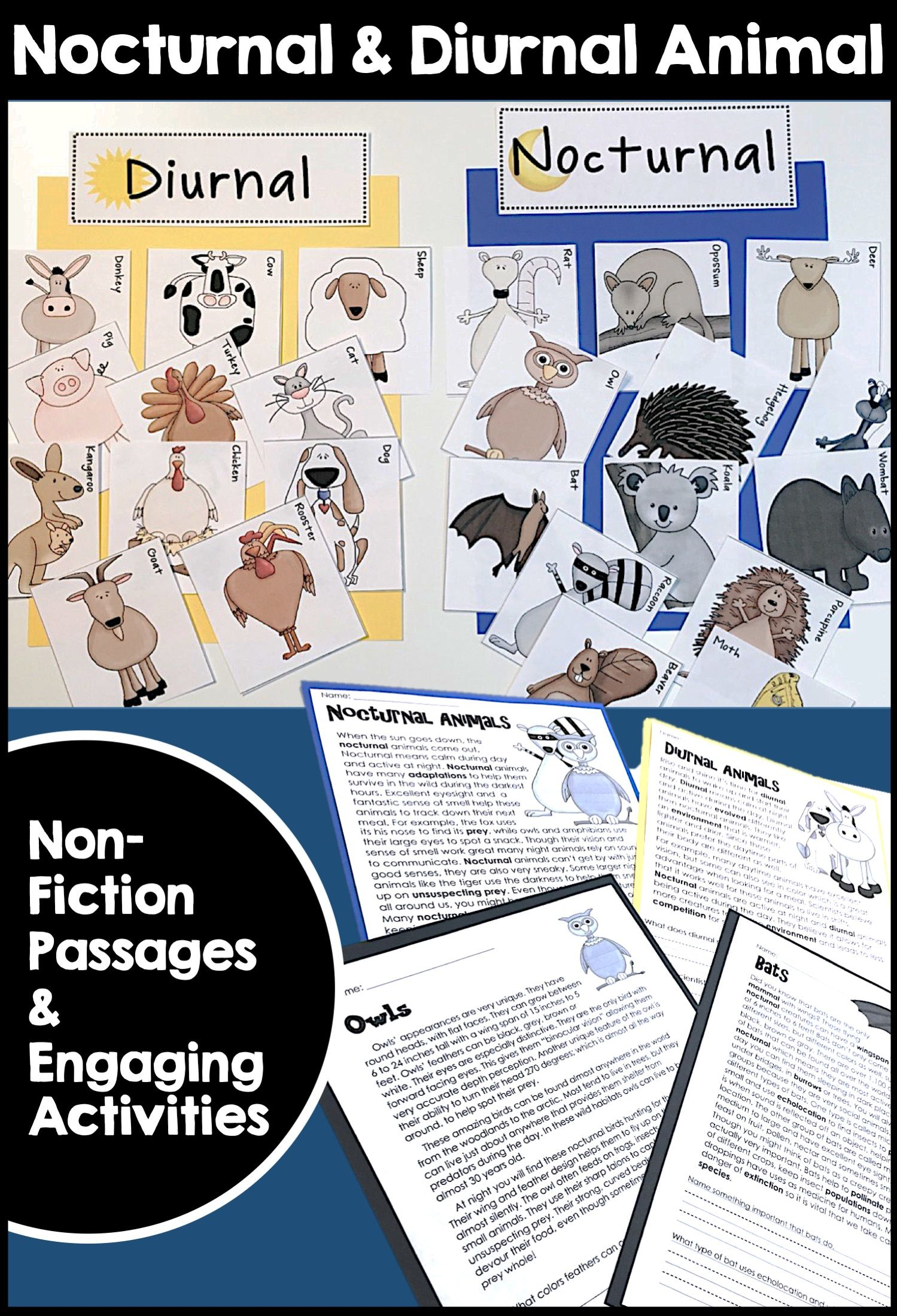Nocturnal And Diurnal Animal Nonfiction Informational Text