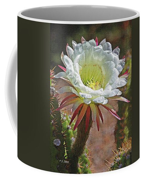 Big White Cactus Flower Coffee Mug featuring the photograph Big White Cactus Flower by Tom Janca