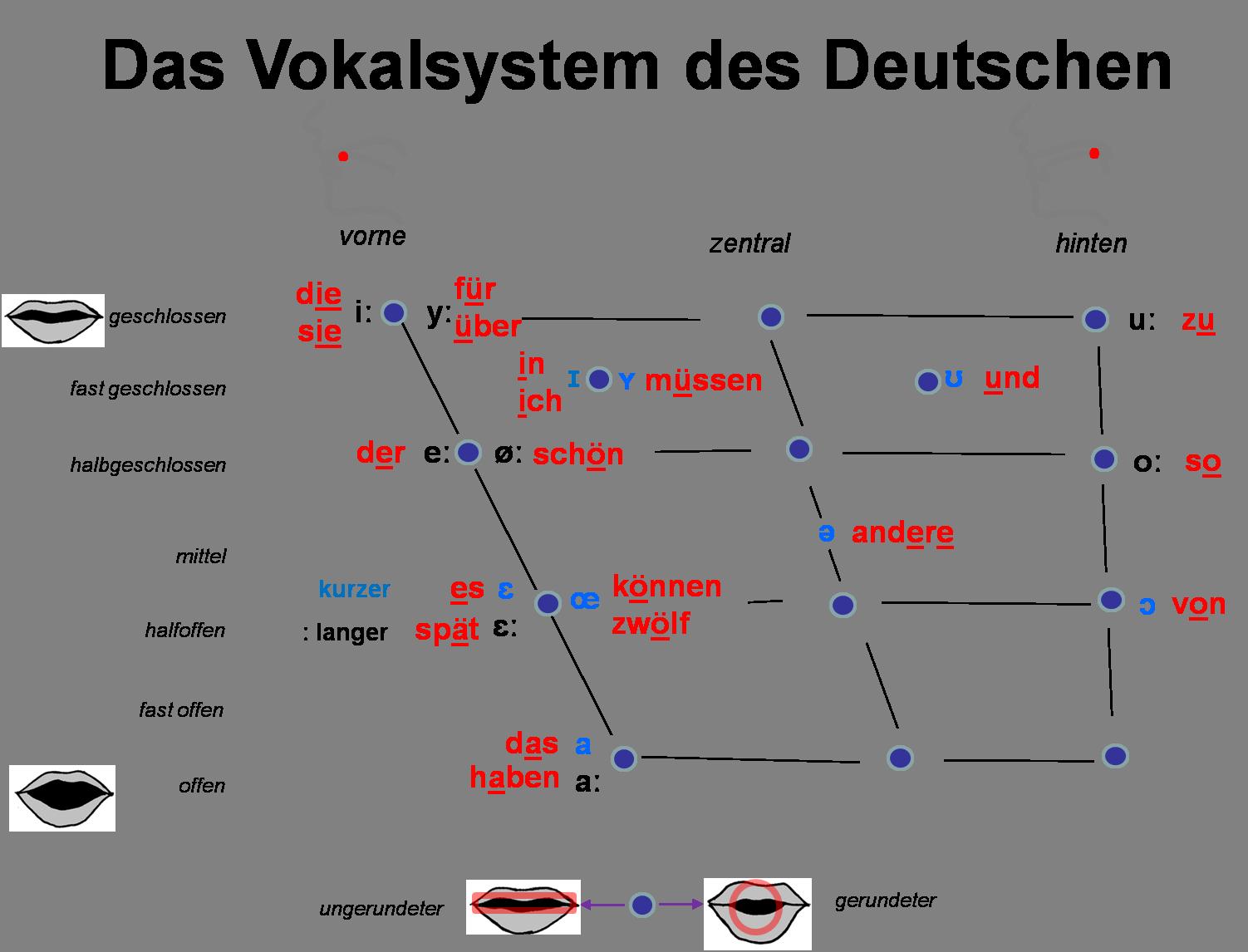 Das vokalsystem des deutschen internationales phonetisches das vokalsystem des deutschen internationales phonetisches alphabet german vowels phonetics international phonetic buycottarizona