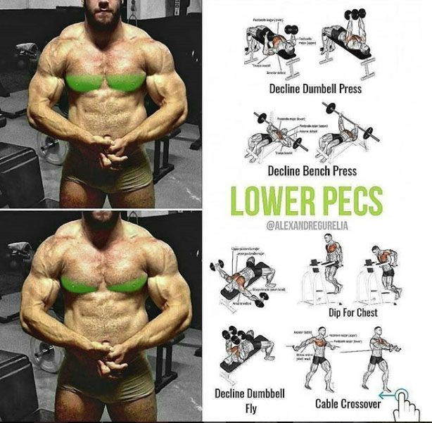Exercises For Every Part Of The Chest