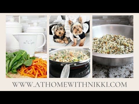 Homemade Dog Food Cooking For Your Pet Youtube Dog