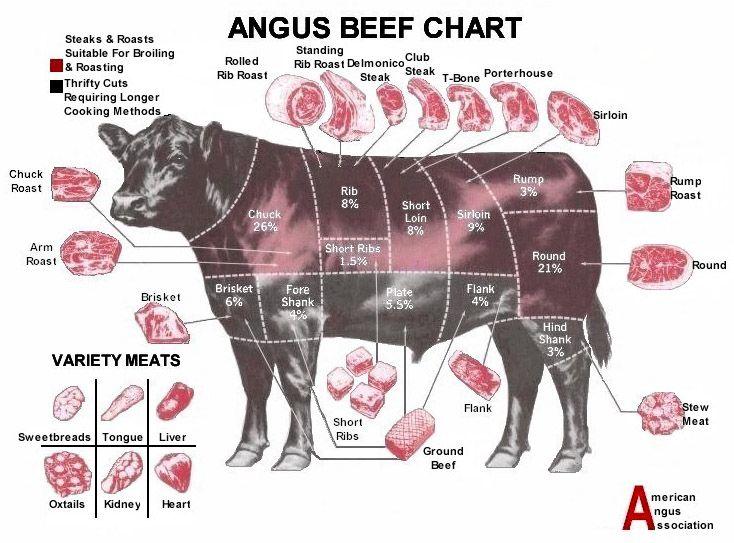 c67d7e8b3620fd170df935560520e4ea butcher diagram beef detailed cuts of beef poster \