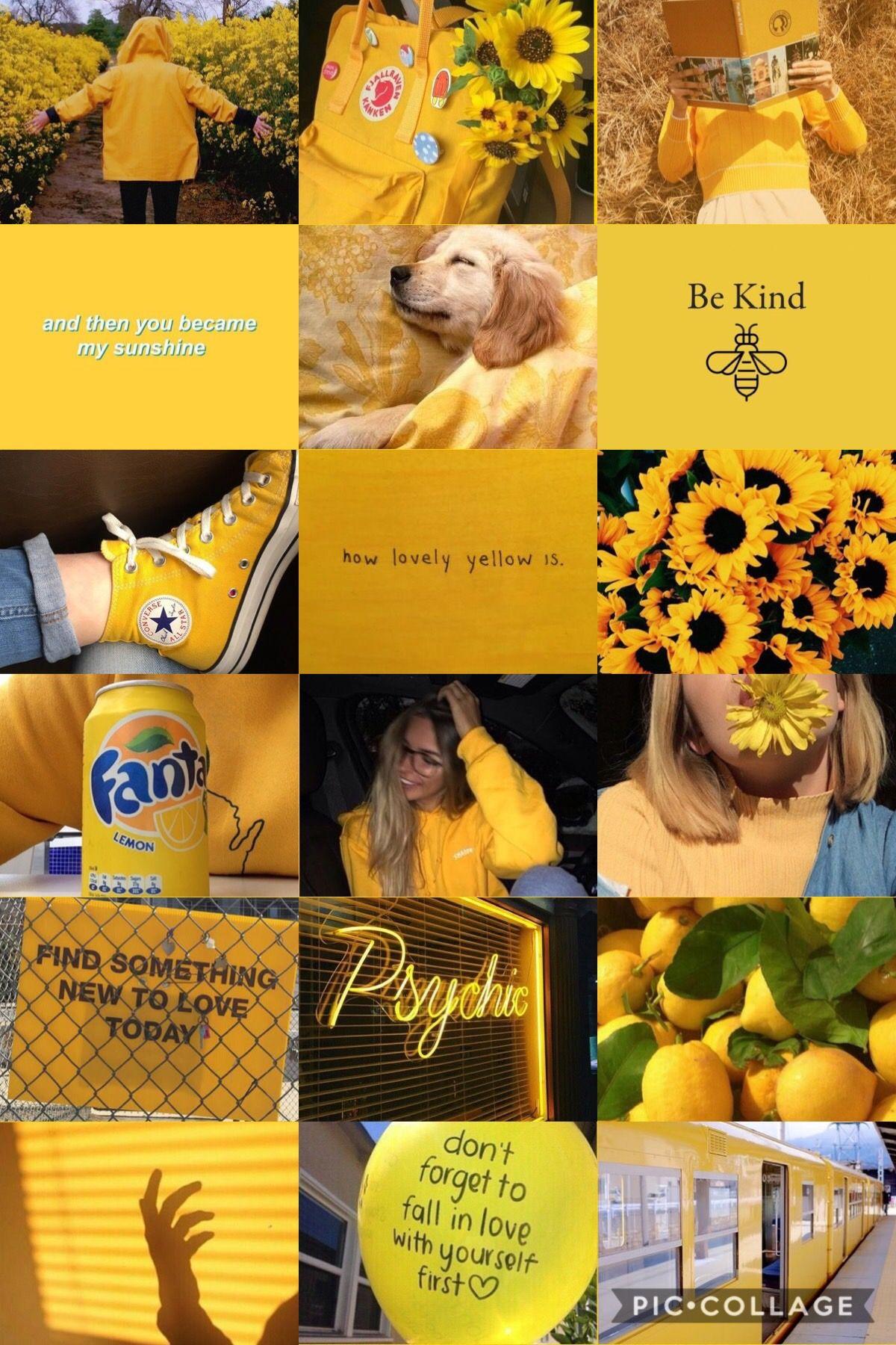 Dolan Wallpaper Iphone Taurus Yellow Aesthetic Pastel Aesthetic Collage