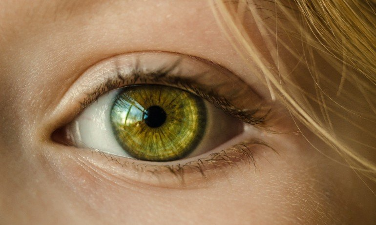 Process For Regenerating Neurons In The Eye And Brain Identified Neuroscience News People With Green Eyes Eye Color Change Eye Color
