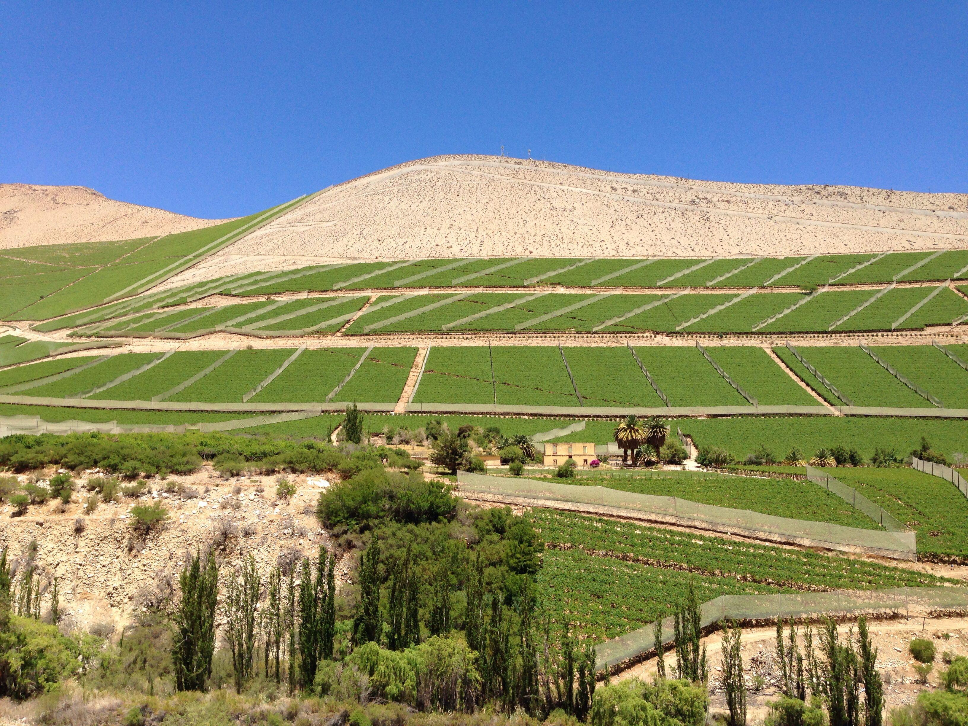 Valle del Elqui, Chile