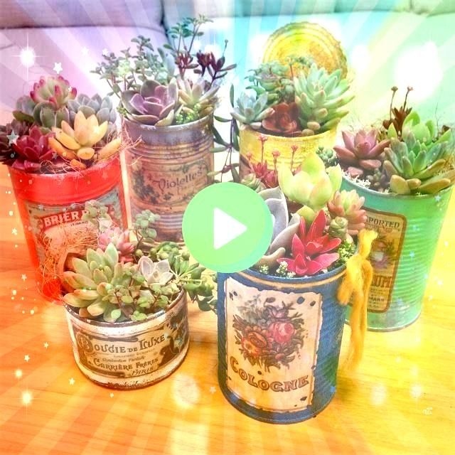 Awesome Repurposed Succulent Planters Ideas  Succulents are perfect plants for dry gardens and are easy to root and grow Once you learn how easy it is to propagate succul...