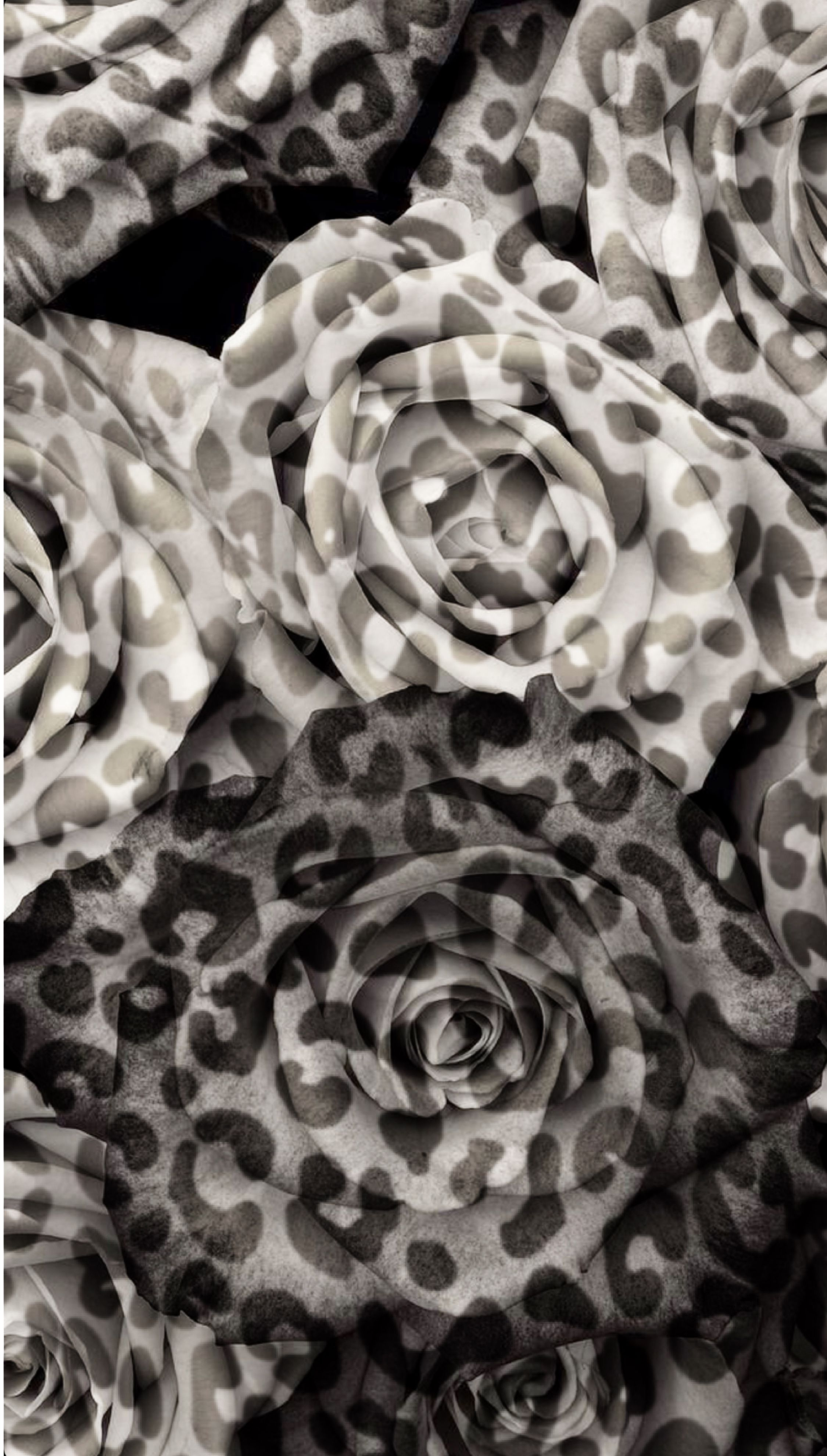 Leopard print monochrome roses iPhone wallpaper