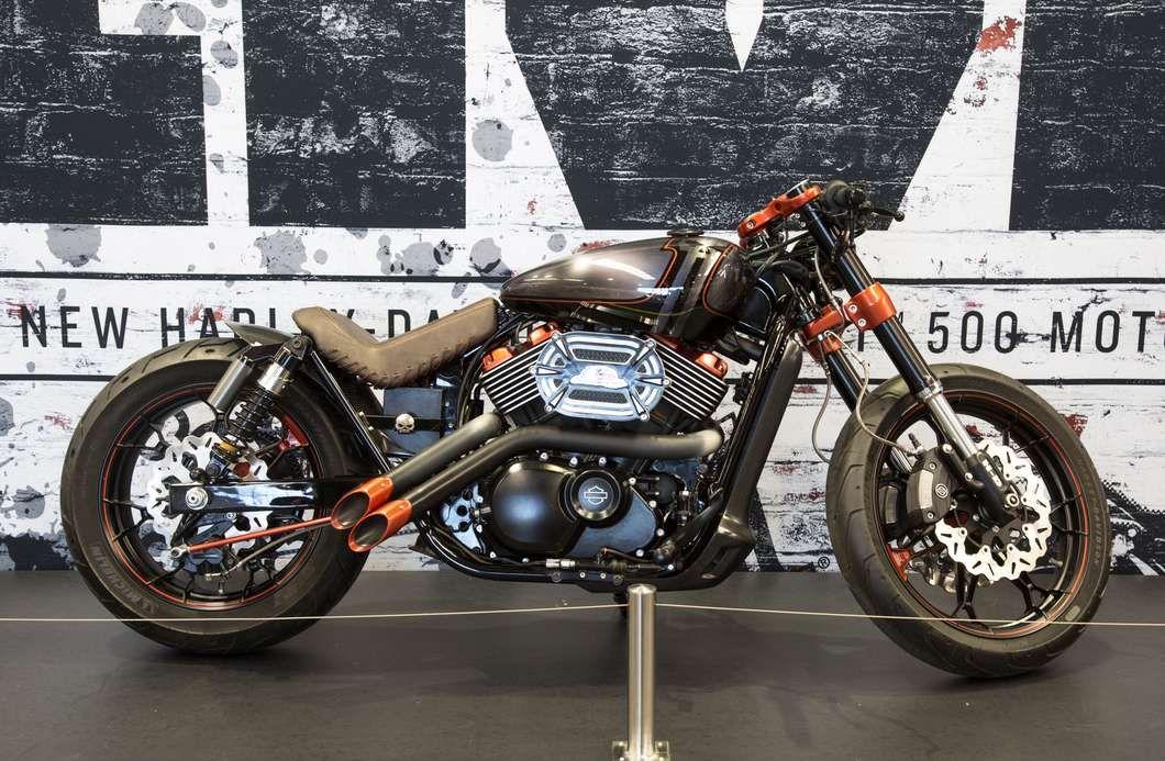 """The Hoglet: Harley-Davidson's Street 500 """"learner Bike"""