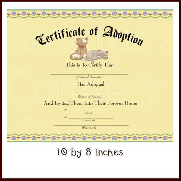 6 Teddy Bear Birth Certificate Template 63821: Cat Adoption Certificate Dis.png 600×600 Pixels