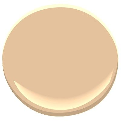 Den wall color. Benjamin Moore 1144 | house paint colors interior ...