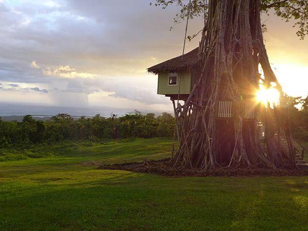 Lupe Sina Treesort Treehouse Hotel official website | Upolu, Samoa