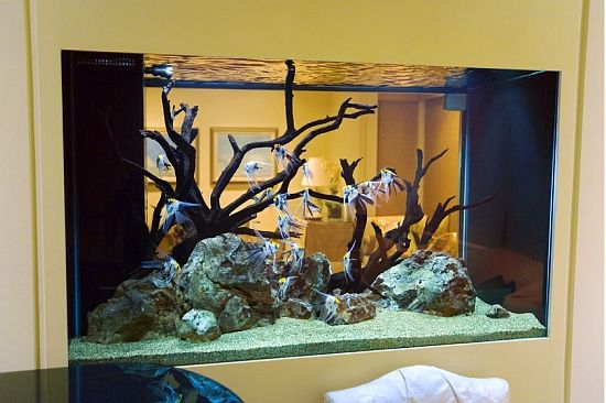 perfect design two sided aquarium