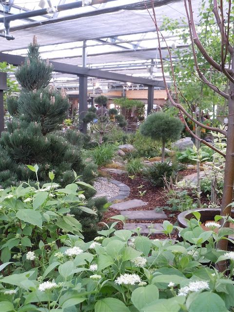LIVING THE GARDENING LIFE: Greenland Inspiration (Come see Greenland's Indoor Winter Garden)