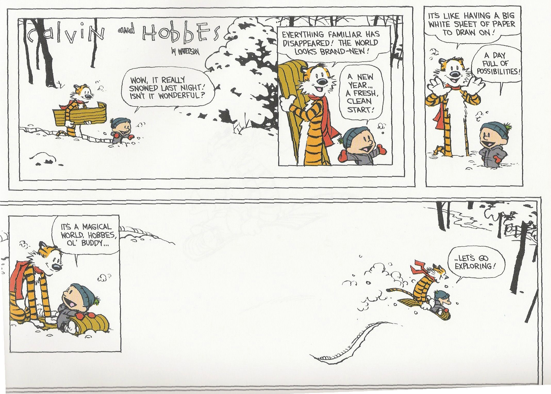 Consider, final calvin and hobbes comic strip