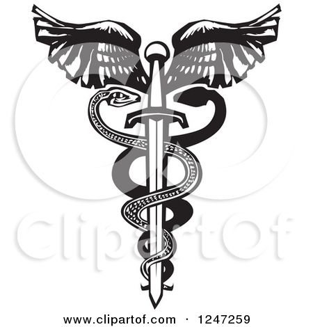 The Winged Sword With Shield Vector Icon. Royalty Free Cliparts, Vectors,  And Stock Illustration. Image 148802129.