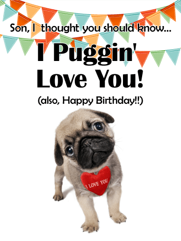 Funny Birthday Card For Son Pug Cards Really Cant Be Beat They Are Hilarious And Adorable Send This To Your Today
