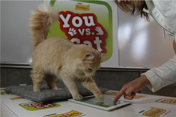 Friskies launches iPad game that lets humans play against cats