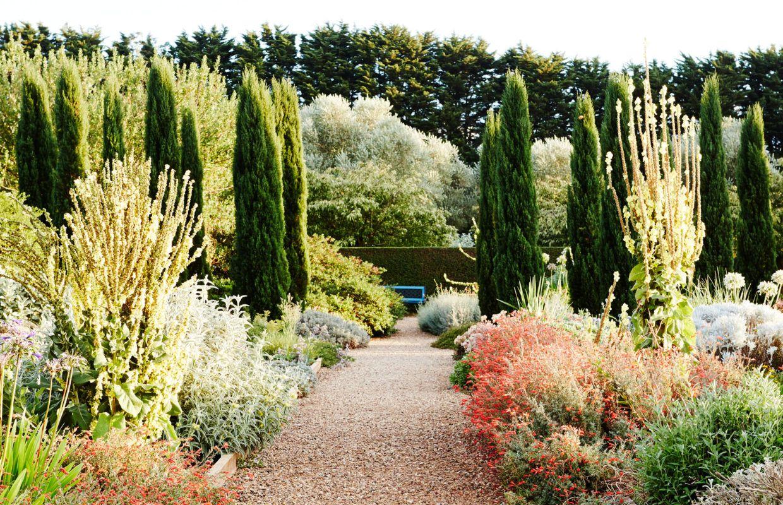 Lambley Nursery In Ascot Australian Garden Mediterranean Landscaping Garden Plants Design