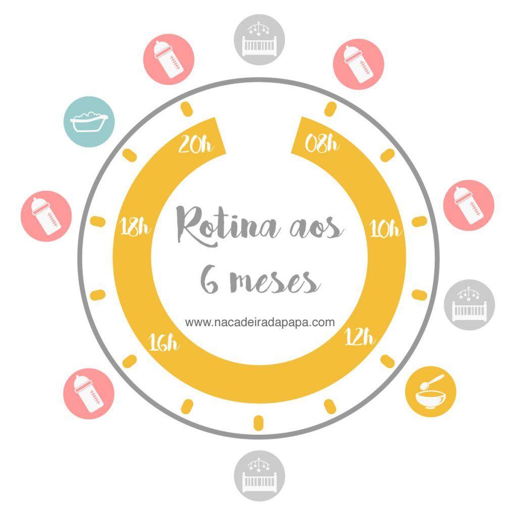 Bebe De 6 Meses Rotinas E Alimentacao Com Imagens Rotina De